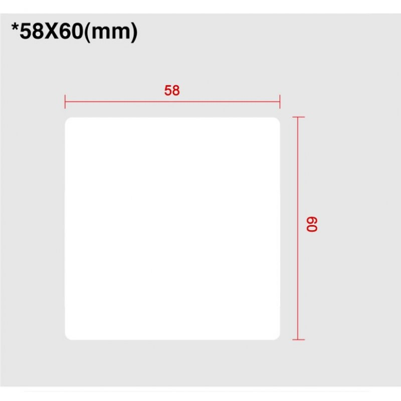 Scale Labels 58 X 60 (blank)